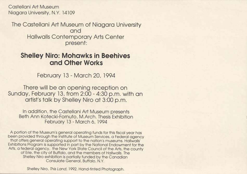 SHELLEY NIRO: MOHAWKS IN BEEHIVES AND OTHER RECENT WORKS